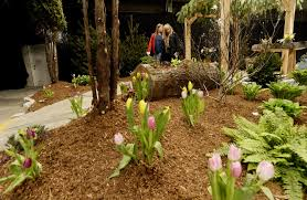 Small Picture Top three Landscape Design School front yard landscaping ideas