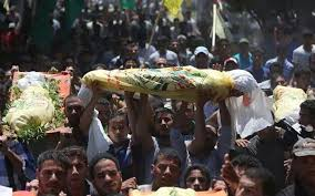essay on gaza war in gaza war violent death part of daily life the hindu