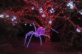 zoo lights. Exellent Zoo Zoolights Phoenix  Judy Hedding Throughout Zoo Lights E