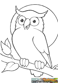 Small Picture Coloring Pages Draw An Owl Coloring Page Blog