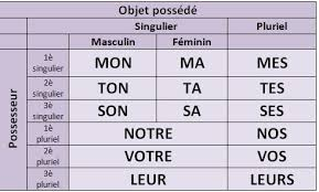 Possessive Pronouns In French Chart Charts For French Grammar Help Duolingo