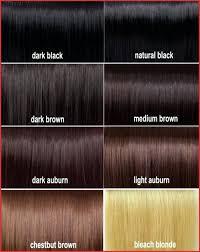 Loreal Hair Dye Color Chart 28 Albums Of Shades Of Brown Hair Color Chart Loreal