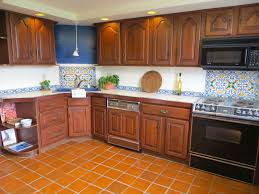 Terra Cotta Tile In Kitchen Sparkling Terracotta Tile And Solistone Terra Cot Together With
