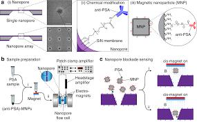 Nanopore Blockade Sensors For Ultrasensitive Detection Of