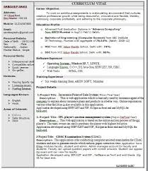 1 Page Resume Example Custom One Page Resume Example One Page Sample Resumes One Page Sample For