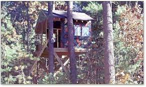 Zelkova Tree House Plans Two Trees Treehouse Guides Baxters Homes