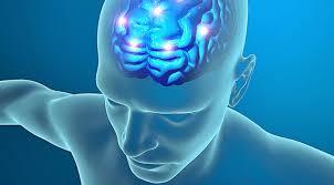 Resultado de imagem para remedios para memória