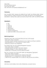 Resume Templates: Epic Consultant