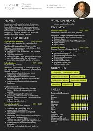 Cyber Security Account Manager Resume Sample Resume Samples