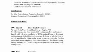 School Counselor Resume Sample Youth Counselor Resume Sample Awesome Youth Pastor Resume 88