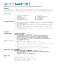 Hotel General Manager Resume Template Delectable Best Administrative General Manager Resume Example Livecareer