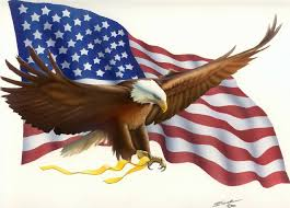 Image result for american flag pics