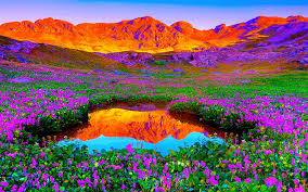 Beautiful Pictures Of Nature Beautiful Nature Pictures 6960188