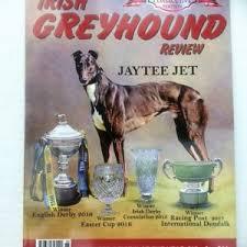 Anatomy Of Greyhound Chart Greyhound Superstore