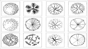 Wonderful Architecture Drawing Png Landscape Design Symbols Treesinplanpng For Decorating