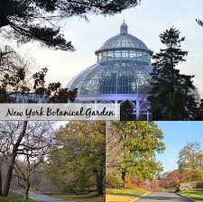 botanical gardens zoo and aquarium in new york city free days guide