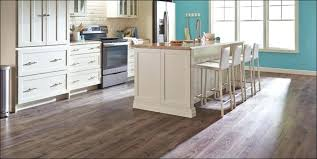 flooring adhesive remover sentinel plus adhesive remover gallon