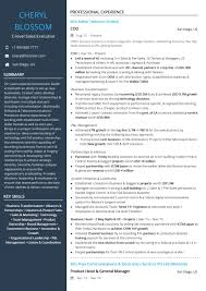 Executive Resume Templates 24 Best Sample Executive Resume