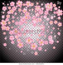 Cherry Blossom Backdrop Cherry Blossom Backdrop On Transparent Background Stock