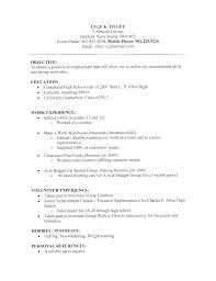 Usa Jobs Resume Unique Usa Jobs Resume Builder Sample Professional Resume