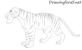 how to draw shere khan