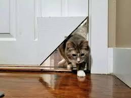 door with cat door sliding glass door cat door insert cat flap glass door melbourne
