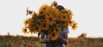 Floret <b>Flowers</b> - We are a small family <b>farm</b> in Washington's Skagit ...