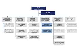 Cag Organisation Chart About Cmo