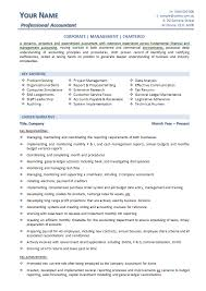 Professional Strengths Resume Accountant Resume Template Melbourne Resumes