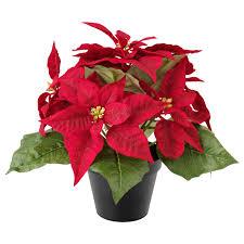 Vinterfest Topfpflanze Künstlich Weihnachtsstern Rot