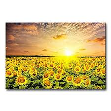 modern canvas painting wall art the picture for home decoration idyllic scenic sunflower field on on sunflower wall art canvas with amazon modern canvas painting wall art the picture for home