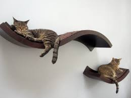 wall shelving for cats their popular lines of modern and elegant cat furniture the lotus branch