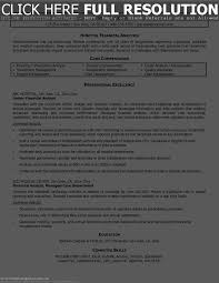 100 Best Sample Ceo Resumes Examples Of Resumes Ceo Award
