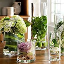 Noah Decoration Hand-Blown and Handmade Cylinder Clear Glass Flower and  Filler Vase for Home
