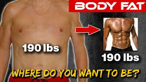 How To Find Out Fat Percentage Body Fat Percentage How To Quickly Identify Your Body Fat Level