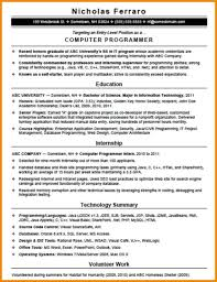 Computer Programmer Resume Art Resume Examples