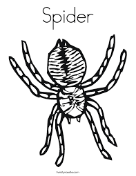 Small Picture Spider Coloring Pages Twisty Noodle
