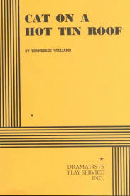 writing introductions for cat on a hot tin roof essay cat in a tin hot roof essay nono or at