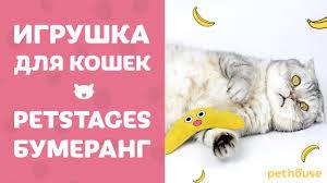 <b>Игрушка для кошек Petstages</b> Boomerang Buddy | обзор