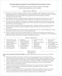 40 Professional Manager Resumes PDF DOC Free Premium Templates Beauteous Business Manager Resume