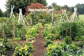 kitchen garden design small vegetable garden design ideas plan kitchen garden design uk