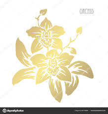 Decorative Orchid Flowers Design Elements Can Used Cards