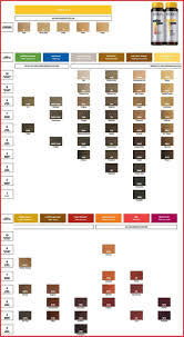Chi Hair Color Chart Chi Hair Color Charts 129457 Redken Color Gels Hair Color