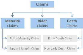 Life Insurance Claims Process Flow Chart Life Insurance Claim Settlement Filling Documentation
