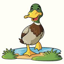 Image result for duck clipart
