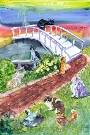 rainbow bridge pet sympathy card for cats want to know more on