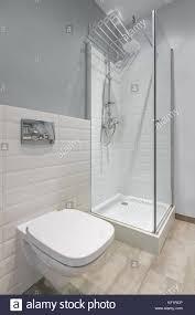 In Grau Und Weiß Gehaltenes Badezimmer Mit Wc Dusche Und Modernen