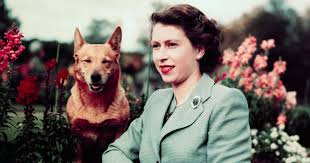 Born 21 april 1926) is queen of the united kingdom and 15 other commonwealth realms. Why Should I Care About Queen Elizabeth Ii Star Of Netflix S The Crown