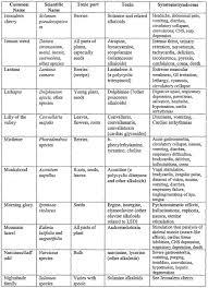 58 Unique Mineral And Vitamin Chart