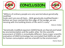 gmo foods pros and cons essay esl power point help thesis  seven days 7 2014 by seven